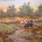 cows-at-sunset